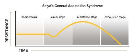 general-adaptation-syndrome